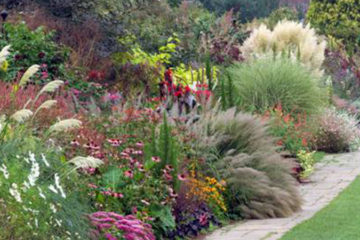 Ornamental Grasses and Perennial Gardens